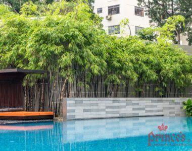 Tomlinson Condominium | Landscape Maintenance