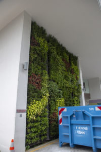 Green Wall Installation at PathLight School