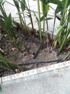 Drip Irrigation System with Quick Coupling