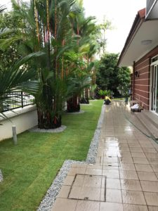 Turfing of Residential Property