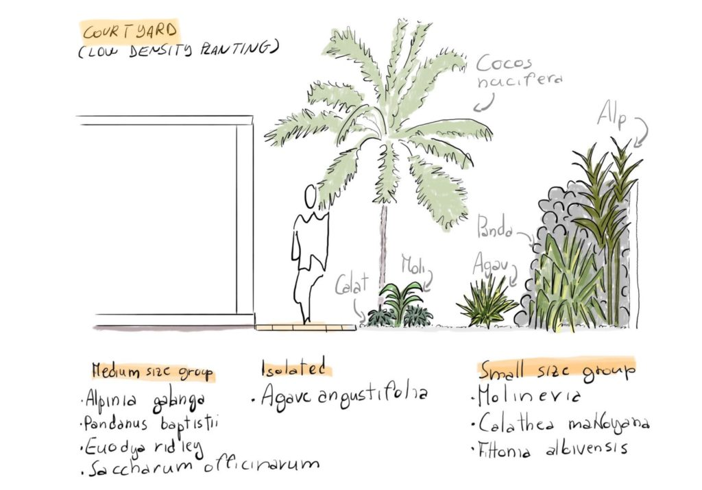 Tropical layout
