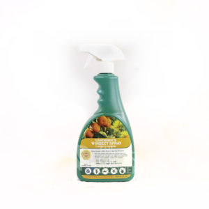 Insect Spray 500ml Spray